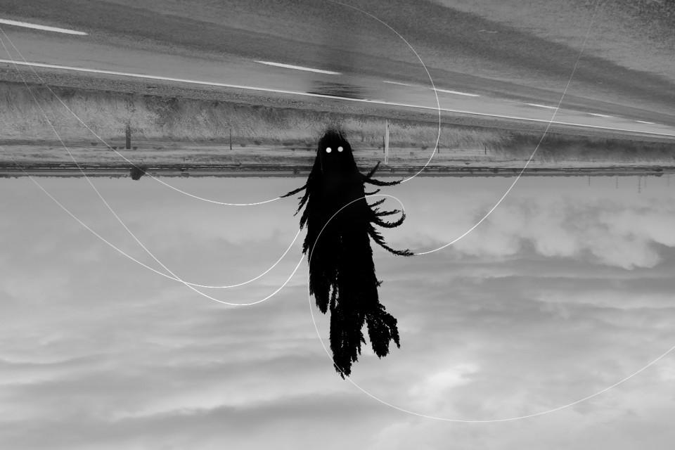 black ghost_2